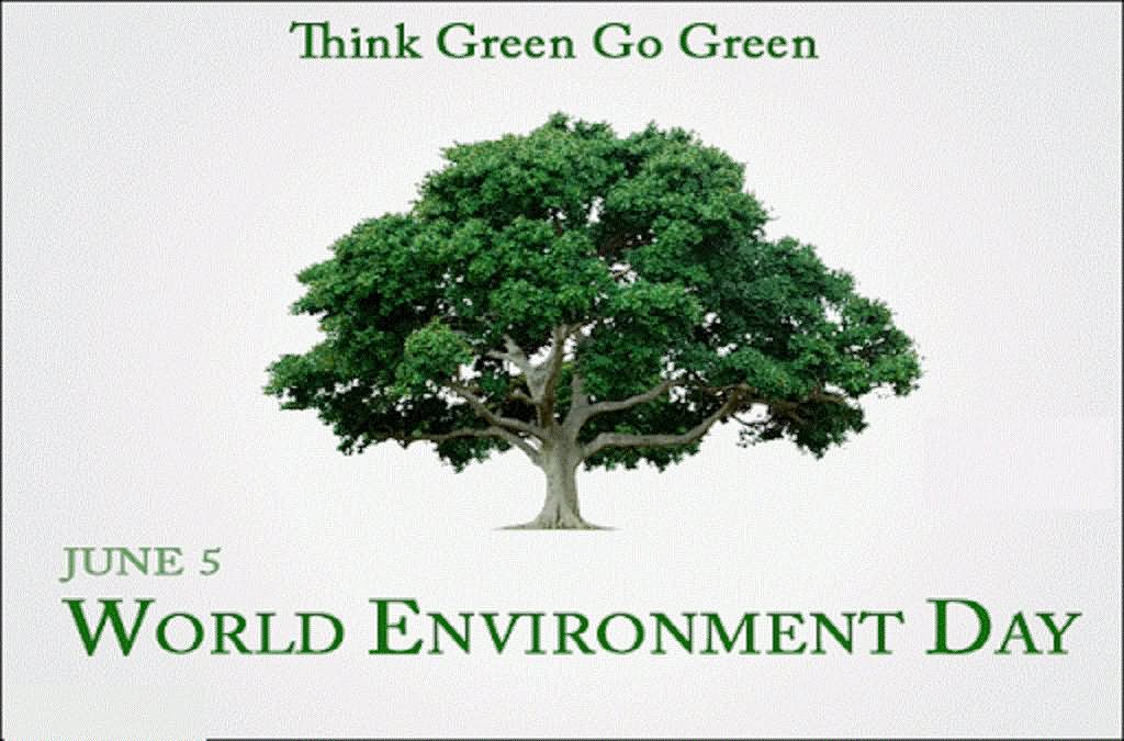 World Environment Day 2017 HD Pics