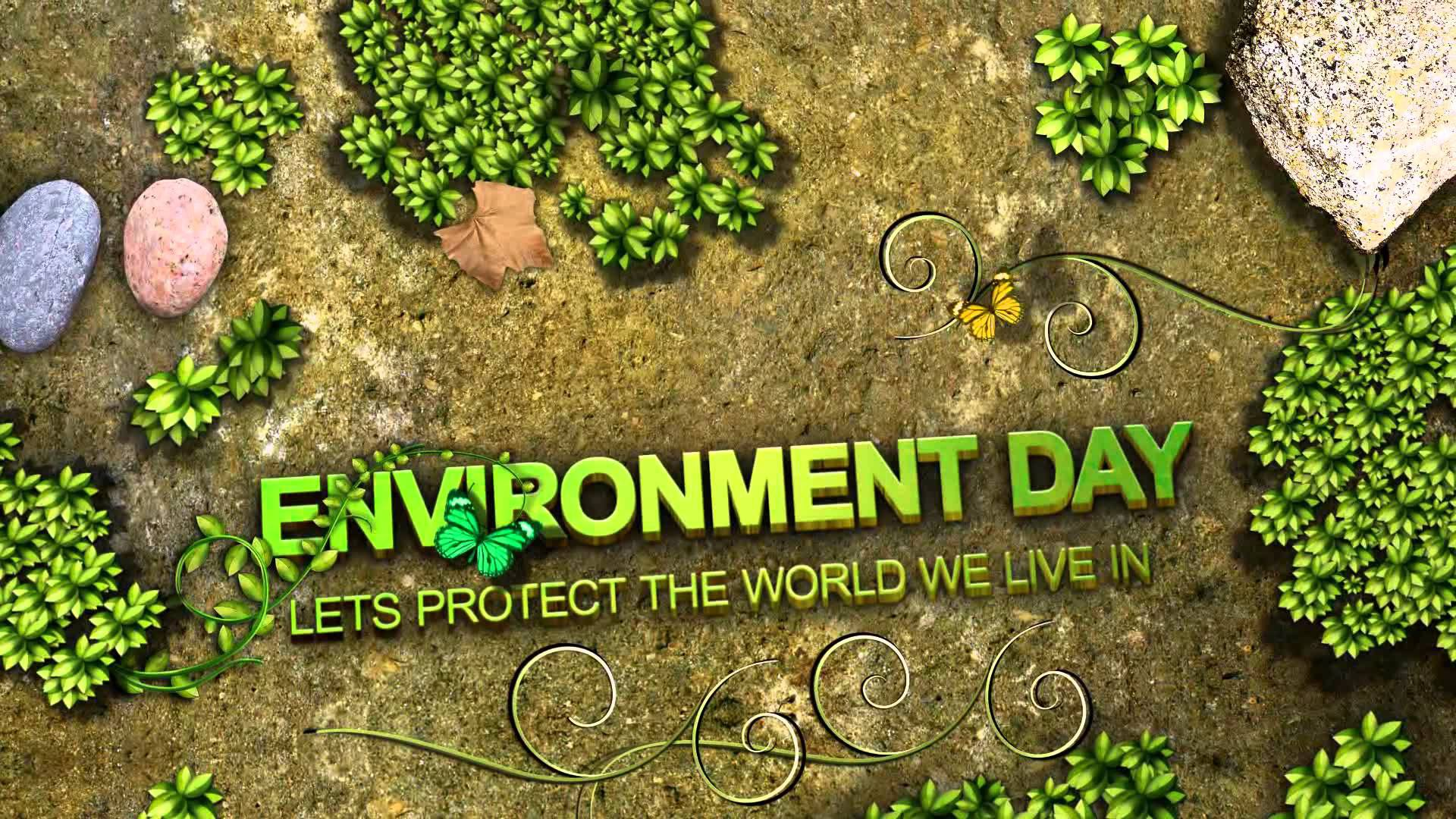 World Environment Day 2017 Picture