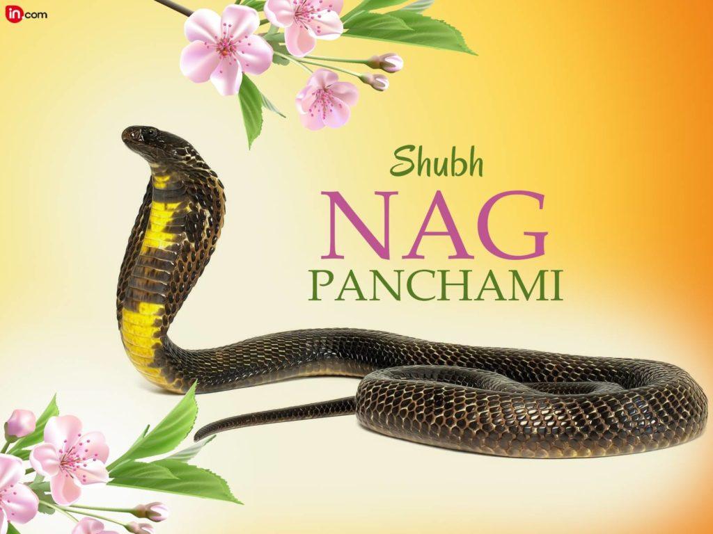 Nag Panchami 2017 HD Image