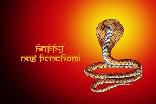 Nag Panchami 2017 Image