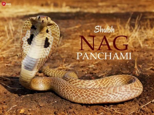 Nag Panchami 2018 Whatsapp Profile
