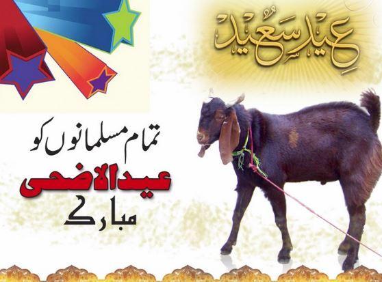 Bakra Eid Whatsapp DP
