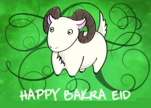 Bakri Eid DP For Whatsapp