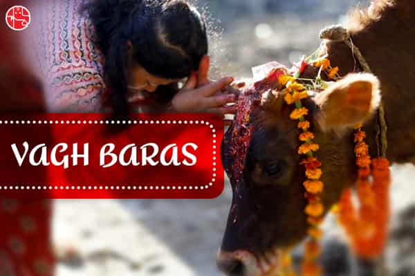 Vagh Baras 2021 HD Photo