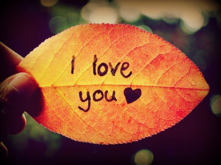 I Love You HD Image free download