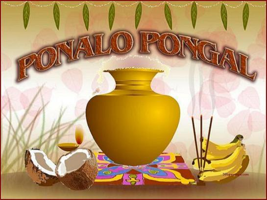 Happy Pongal 2020 Greetings, Quotes & Slogans in Tamil, English & Telugu