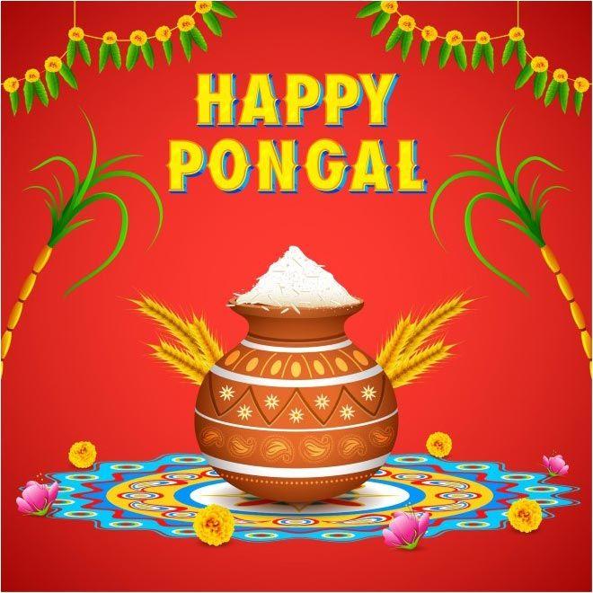 Happy Pongal 2018 Photos