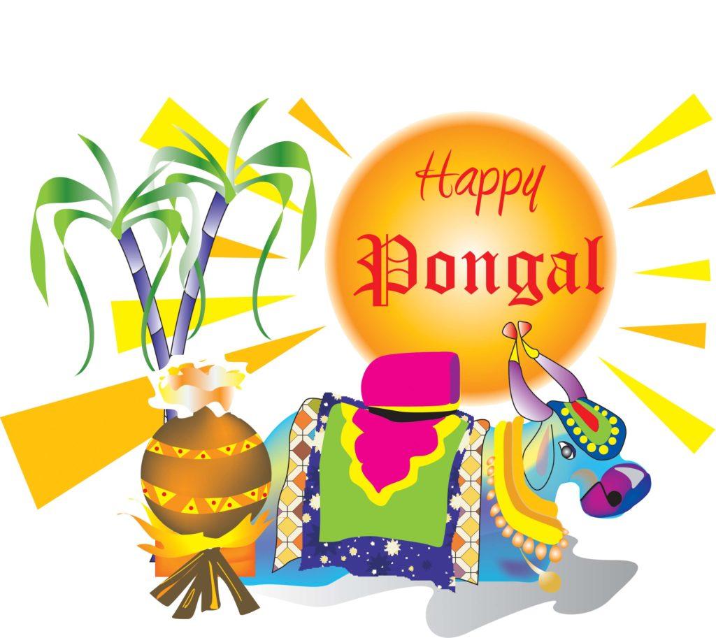 Happy Pongal DP