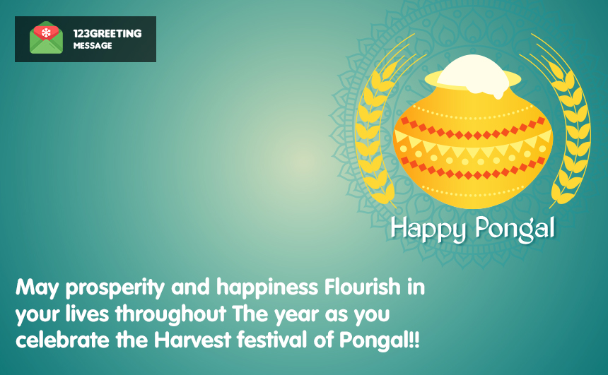 Happy Pongal Status