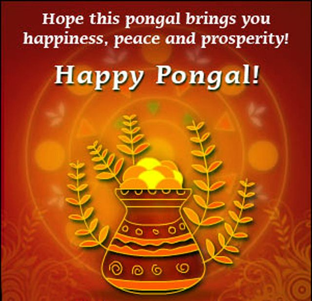 Happy Pongal wishes in Tamil & Telugu font