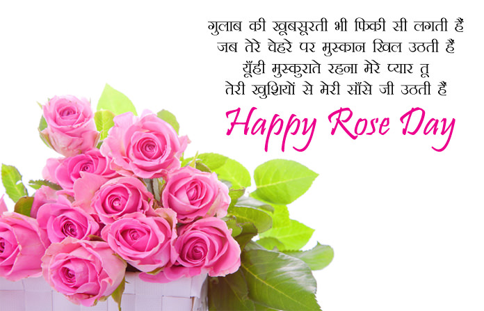 Rose Day 2018