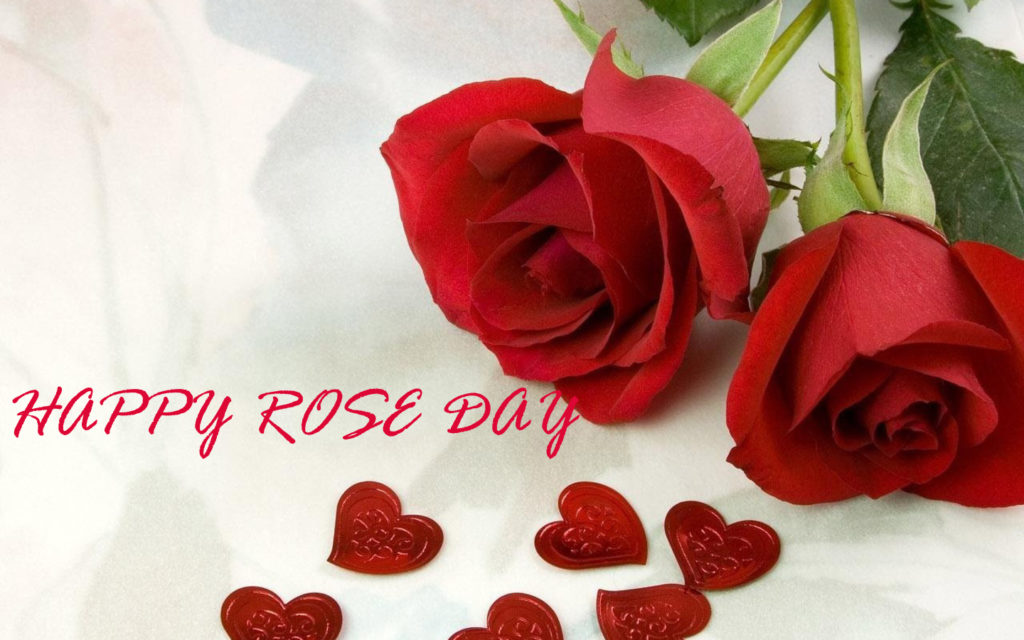 Rose Day 2018 Image for Whatsapp