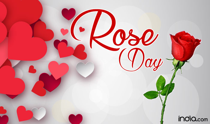 Rose Day 2019