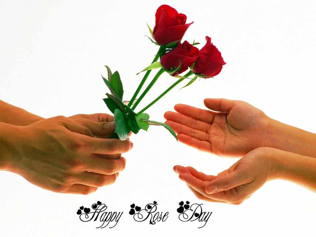 Rose Day DP for GF & BF