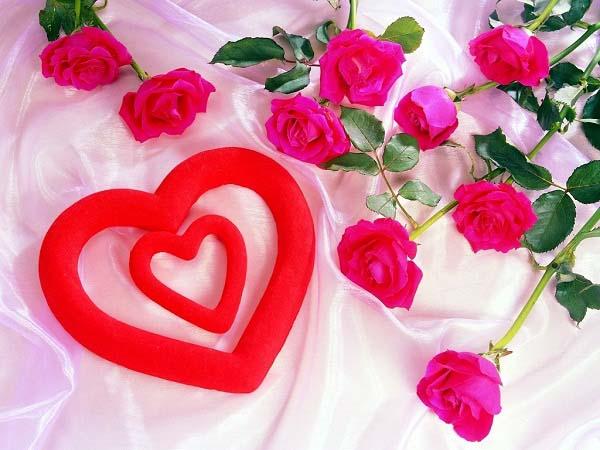 Rose Day DP