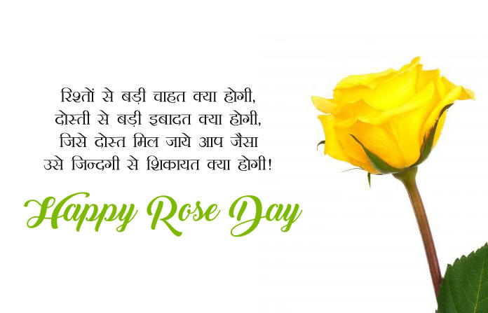 Rose Day HD Image