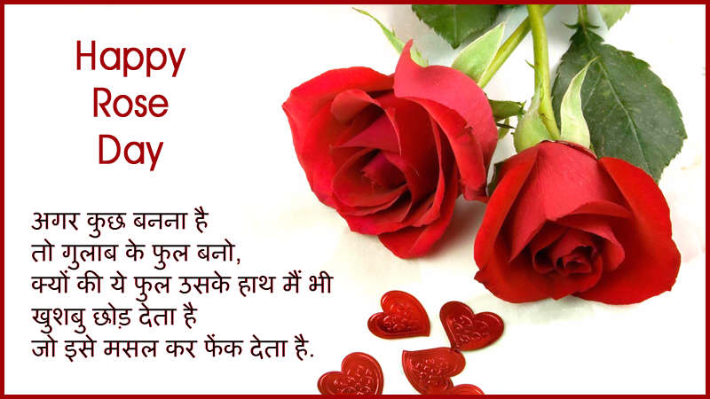 Rose Day Images for Boyfriend & Girlfriend 2018