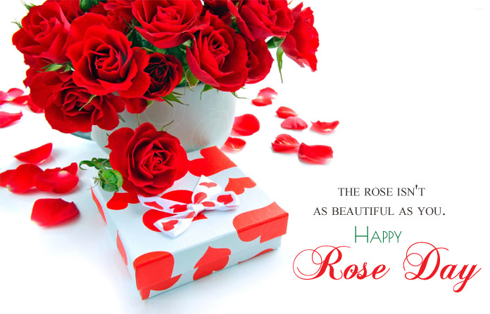 Special Rose Day Images
