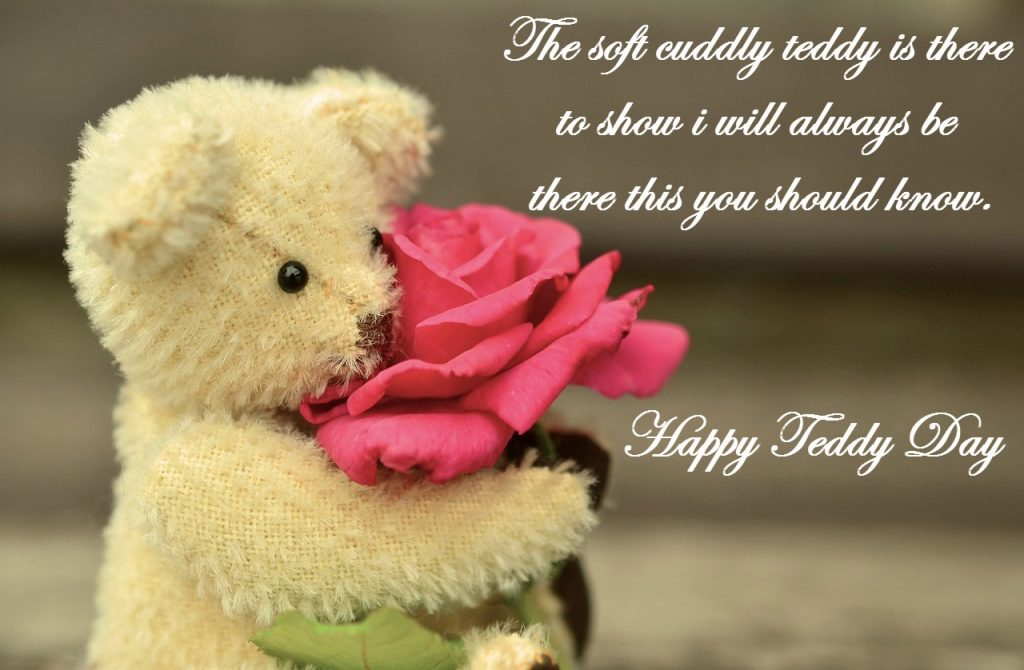 Teddy Day 2018 Image for Whatsapp
