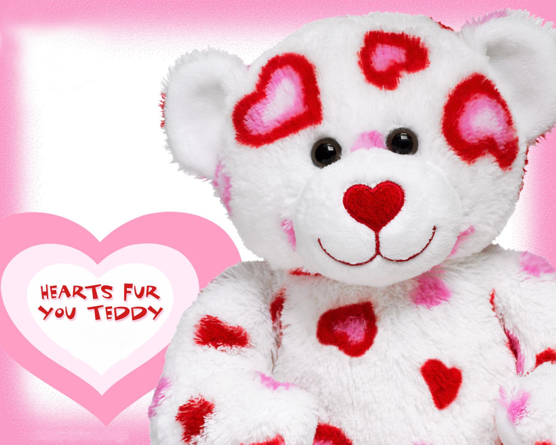 Teddy Day HD Pics