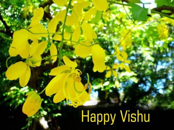 Happy Vishu Pics