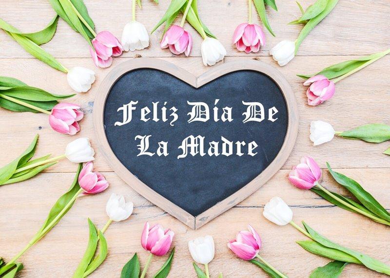 Imagenes Feliz Dia De Madre