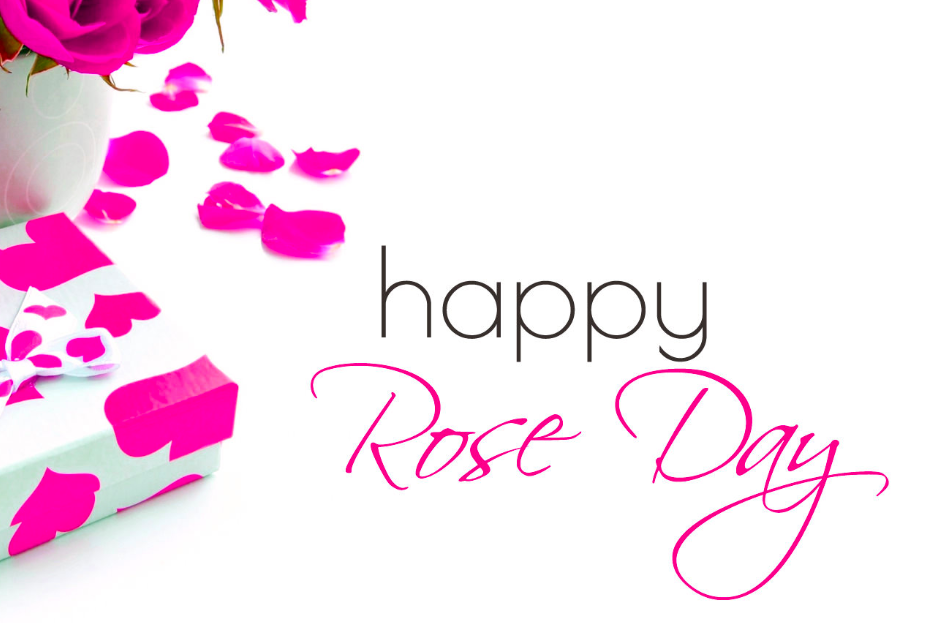 Rose Day Images 2019
