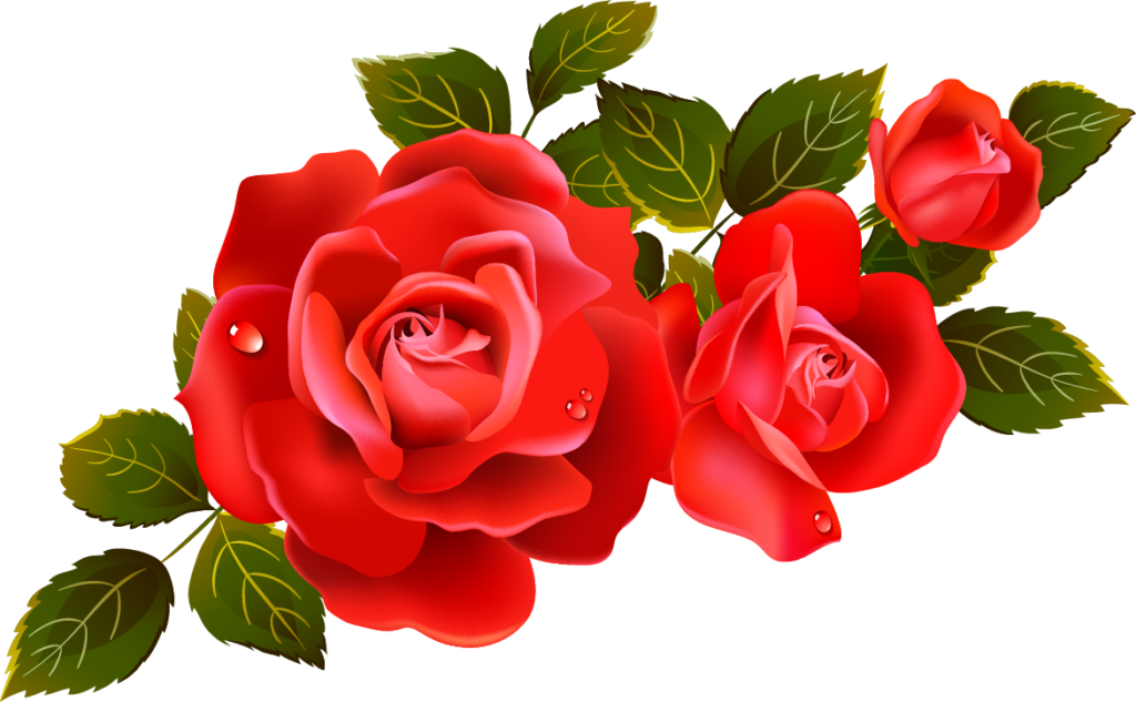 Rose Day Red Rose Stickers