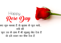 rose day whatsapp status video