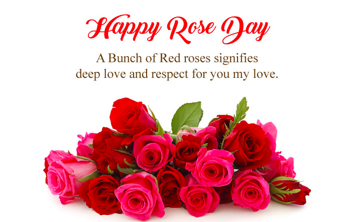 Rose Day Whatsapp Status for Boyfriend, Girlfriend & Lovers